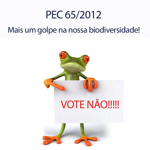 pec65